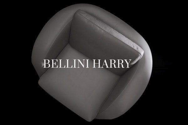 Bellini_Harry_video_dettaglio(1)