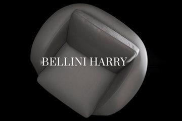 Bellini_Harry_video_dettaglio(2)