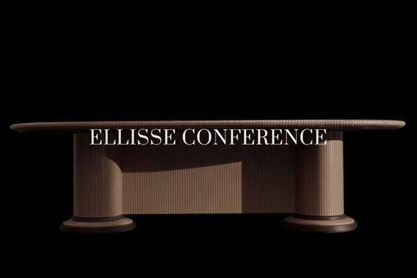 Elisse_COnference_video_dettaglio(3)