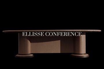 Elisse_COnference_video_dettaglio(4)